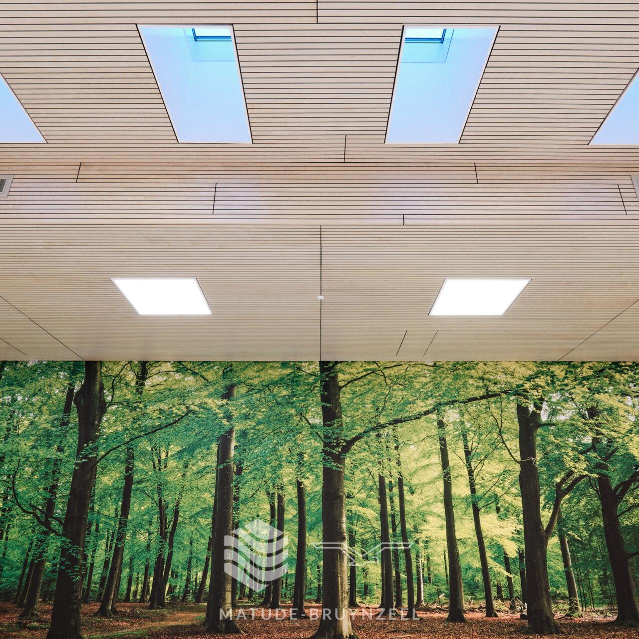 https://www.matude.nl/wp-content/uploads/2020/12/Matude_Bruynzeel_MFA_Voorn_Bruynzeel_Perfosound_Line_Akoestisch_Plafond_09-1280x1280.jpg