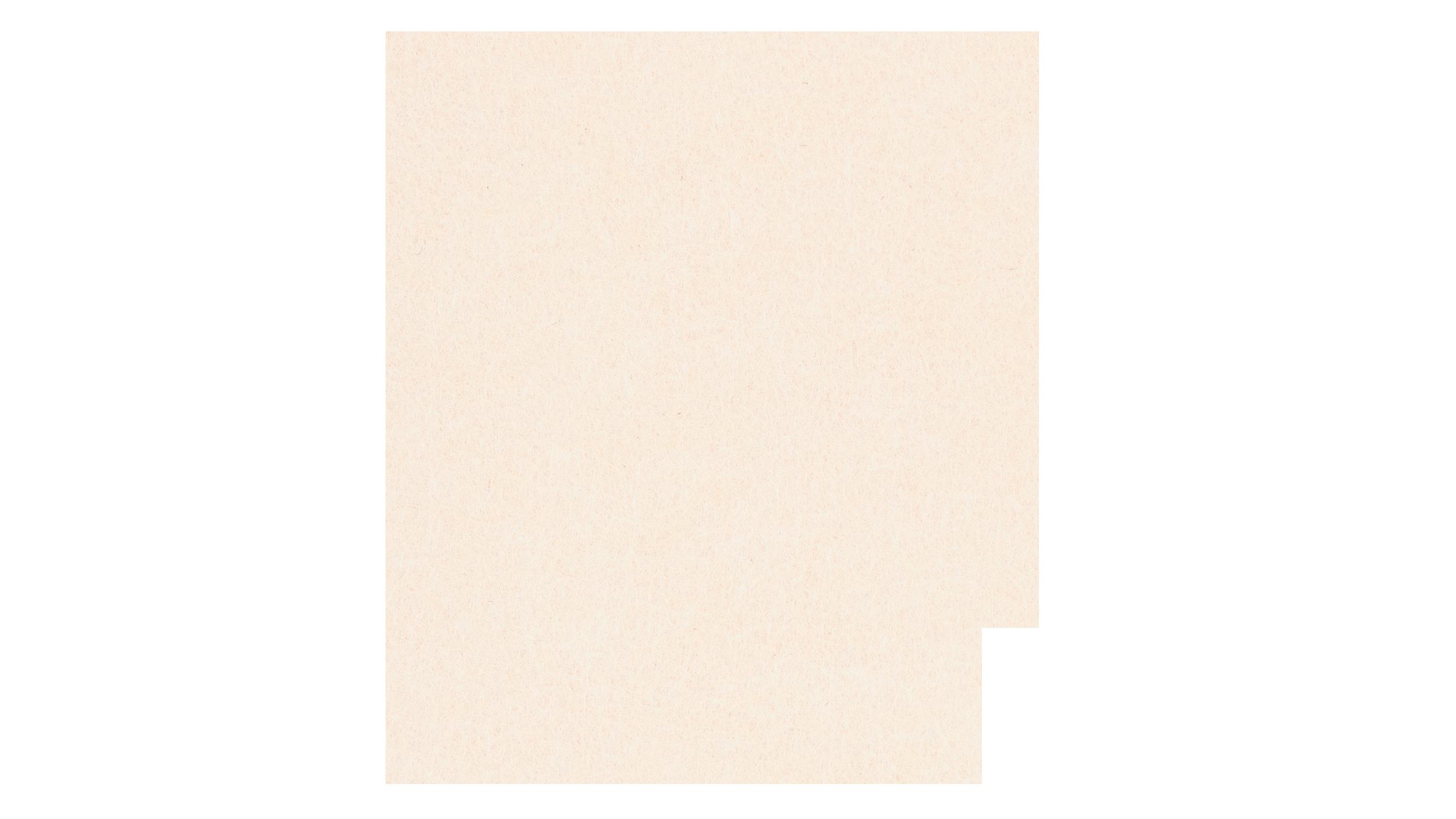 PETpanel - Vanille - Kleurcode 06